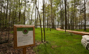 We Are Recreation Trail